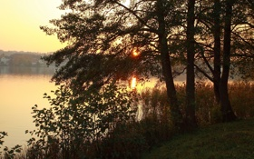 Обои деревья, закат, ветки, природа, река, фото, рассвет