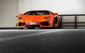 Обои оранжевый, Lamborghini, Ламборджини, стоянка, парковка, Ламборгини, LP700-4