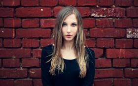 Картинка девушка, стена, кирпичи, красивая
