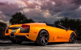 Обои Lamborghini, Murcielago, 640