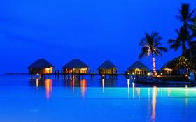 Обои ночь, огни, пальмы, океан, вечер, бунгало, French Polynesia