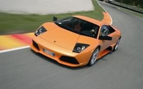Картинка оранжевый, Lamborghini, суперкар, Murcielago