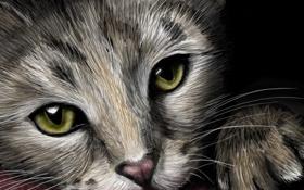 Картинка взгляд, котенок, лапки, мордочка, живопись, ушки, зеленые глаза