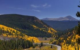 Картинка дорога, осень, лес, небо, деревья, горы