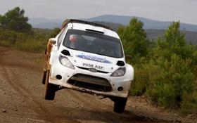 Обои Ford, В воздухе, Спорт, Rally, Белый, WRC, Fiesta