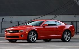 Картинка Chevrolet, автомобиль, стоянка, Camaro