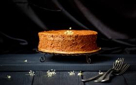 Обои шоколад, торт, десерт, выпечка, сладкое, вилки, бисквит