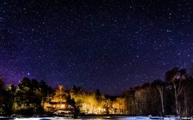 Картинка зима, небо, звезды, деревья, ночь, дома, освещение