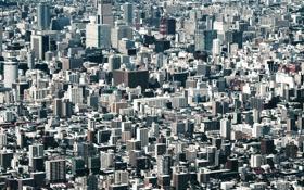 Обои город, здания, Япония, мегаполис