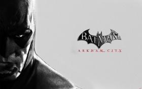Картинка бэтмен, супергерой, Batman Archam City