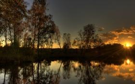 Обои закат, лес, тишина, солнце, вода, вечер, озеро