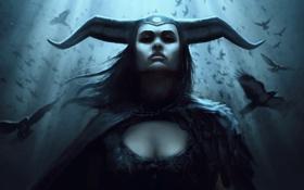 Картинка девушка, птицы, вороны, рога, шлем, art, mother of crows