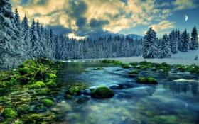 Обои лес, река, небо, зима, снег, камни