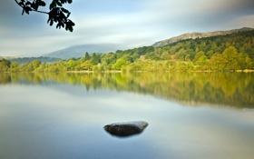 Картинка лето, пейзаж, озеро, камень