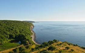 Обои море, лес, небо, холмы, побережье, Дания, Пейзажи
