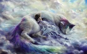 Обои кошка, девушка, облака, фантазия, сон, арт
