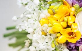 Обои листья, цветы, букет, бутоны, flowers, leaves, bouquet
