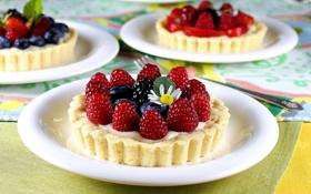 Обои малина, еда, черника, крем, десерт, ежевика, сладкое