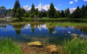 Картинка лес, пейзаж, горы, природа, озеро, National park, Grand teton