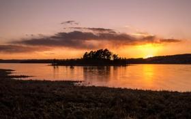 Картинка закат, озеро, остров