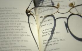 Обои настроения, сердце, тень, очки, книга, сердечко