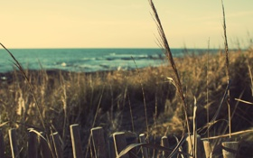 Обои море, побережье, beach, france