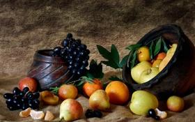 Картинка яблоки, еда, виноград, фрукты, натюрморт, груши