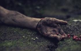 Обои ягода, грязь, рука