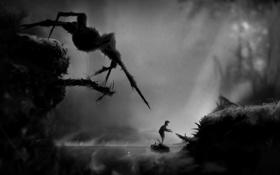 Обои туман, река, человек, паук, черно-белое, видеоигра, Limbo