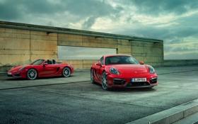 Обои Porsche, Cayman, порше, GTS, 2015, кайман
