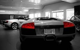 Обои Lamborghini, auto, автосолон, orlando