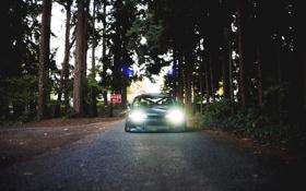 Обои лес, деревья, Машина, Silvia, Nissan, ниссан, Tuning