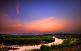 Обои поле, трава, мост, ростки, река, вечер, речка