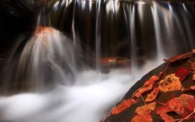 Картинка осень, листья, вода, камень, водопад, красные