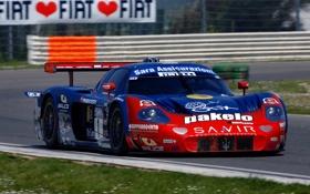Обои car, машина, гонка, Maserati, sport, спортивная, Мазерати