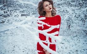 Картинка Природа, Зима, Девушка, Взгляд, Белый, Снег, Лес