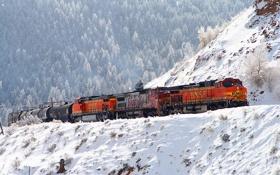 Картинка зима, лес, снег, поезд