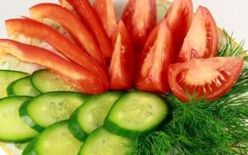 Картинка укроп, овощи, помидоры, нарезка, огурцы