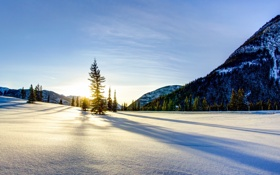 Обои зима, пейзаж, снег