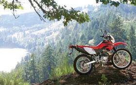 Обои мотоциклы, мото, Honda, moto, кросс