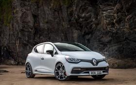 Картинка Renault, Clio, рено, Trophy, 2015, клио, Renaultsport