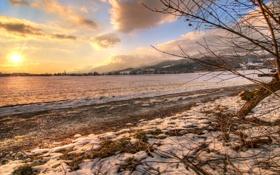 Обои зима, поле, свет, снег, ветки