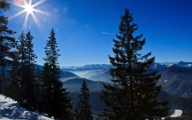 Обои горы, Германия, ели, Germany, Bavarian Alps, Баварские Альпы
