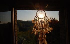 Картинка солнце, природа, перья, талисман, амулет, Dreamcatcher, ловец снов