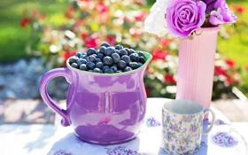 Обои цветы, ягоды, черника, чашка, ваза, кувшин