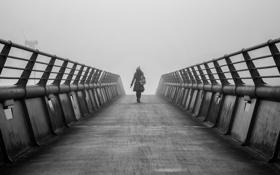 Обои девушка, мост, туман, спина
