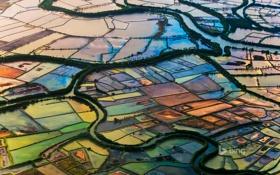 Обои поле, деревья, река, Индонезия, канал, надел, участок