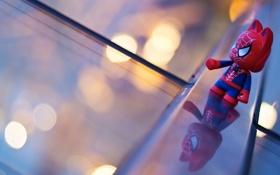 Картинка макро, человек, паук, герой