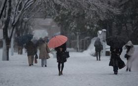 Обои снег, улица, зонтики, прохожие, Benjamin Torode
