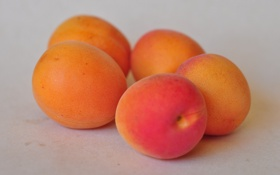 Картинка макро, фрукты, абрикос